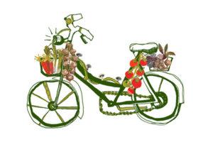 Veg Bike