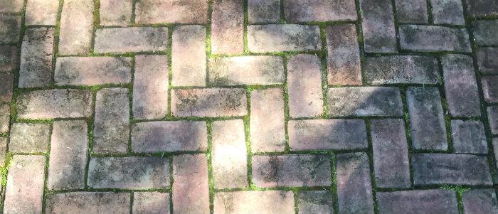 Braehead Manor brick walkway